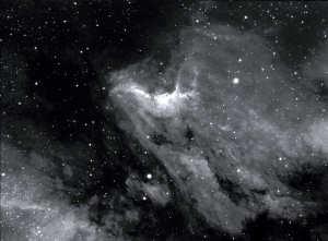 IC 5070 - The Pelican Nebula